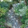 『小さな小道のある家』 / 富士・富士宮・三島 フジモクの家