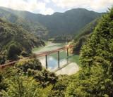 【日本の森林の話~静岡県の森林で育まれた木を使う③】/ 富士・富士宮・三島 フジモクの家