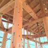 フジモクスタッフの体験記 / 花粉とひのきの無垢板は関係ない?! 富士・富士宮・三島フジモクの家