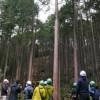 【フジモクの家は、なぜ「富士山麓の森林バスツアー」を開催しているのか】