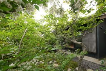 広縁を愉しむ庭のある家 サブ画像1