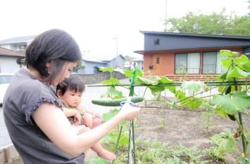 小柳邸畑2