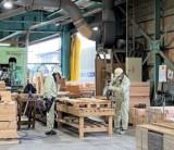 荷物の世界旅を支える、フジモクの包装資材部木材工場「木製パレット事業」のお話 / 富士・富士宮・三島フジモクの家
