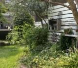 「悩ましい雑草たち。お庭の手入れを楽しむ工夫は?」 /  富士・富士宮・三島フジモクの家
