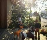 暮らしのイベント「おさんぽ。」 / 富士・富士宮・三島 フジモクの家