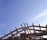 木の家が果たす役割「木の家は第二の森林」~フジモクが日本の木を使った家を建てることの意味