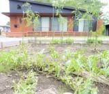 【庭で家庭菜園やバーベキューを楽しもう!】/富士・富士宮・三島 フジモクの家